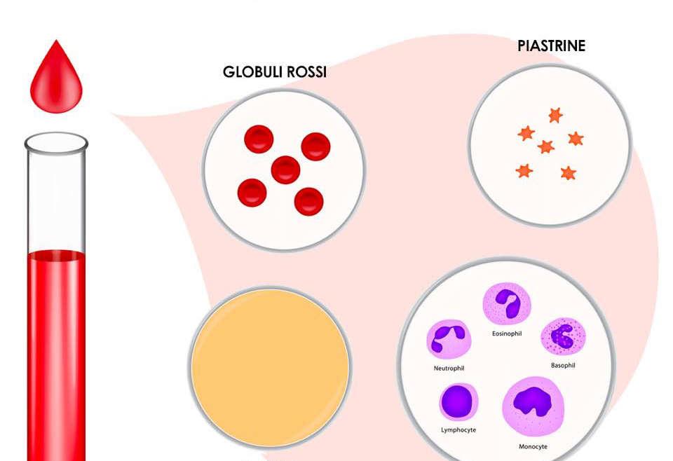 Biostimolazione dei tessuti con il PRP